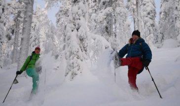 Winter Adventure on Snowshoes Kittilä