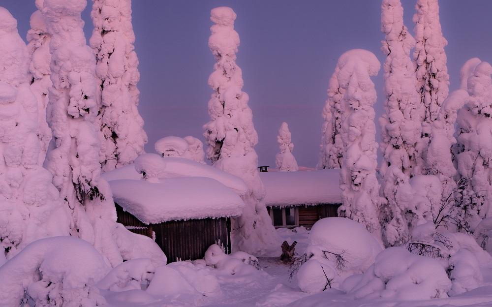 Winter dream, Riisitunturi, Lapland Finland By Jasim Sarker
