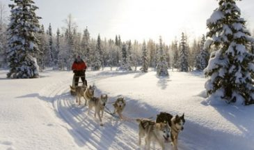 Winter holiday full package in Lapland