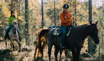 Horseback ride in pyhä summer and autumn landscape , the nature of colorful Lapland soutaja fell