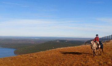 Horseback Riding to the Peak of Pyhä