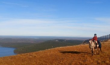 Horseback ride in pyhä summer and autumn landscape , the nature of colorful Lapland
