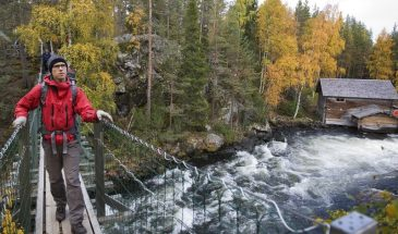 Oulanka National Park hiking summer autumn colors of lapland and beautiful autumn landscape