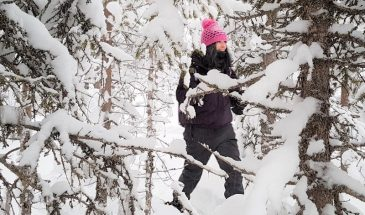 Ounasvaara snowshoe trip Rovaniemi Lapland
