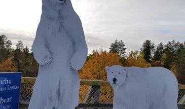 Ranua Zoo visit Lapland