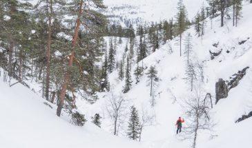 arctic challenge in pyhä luosto lapland snowy winter nature