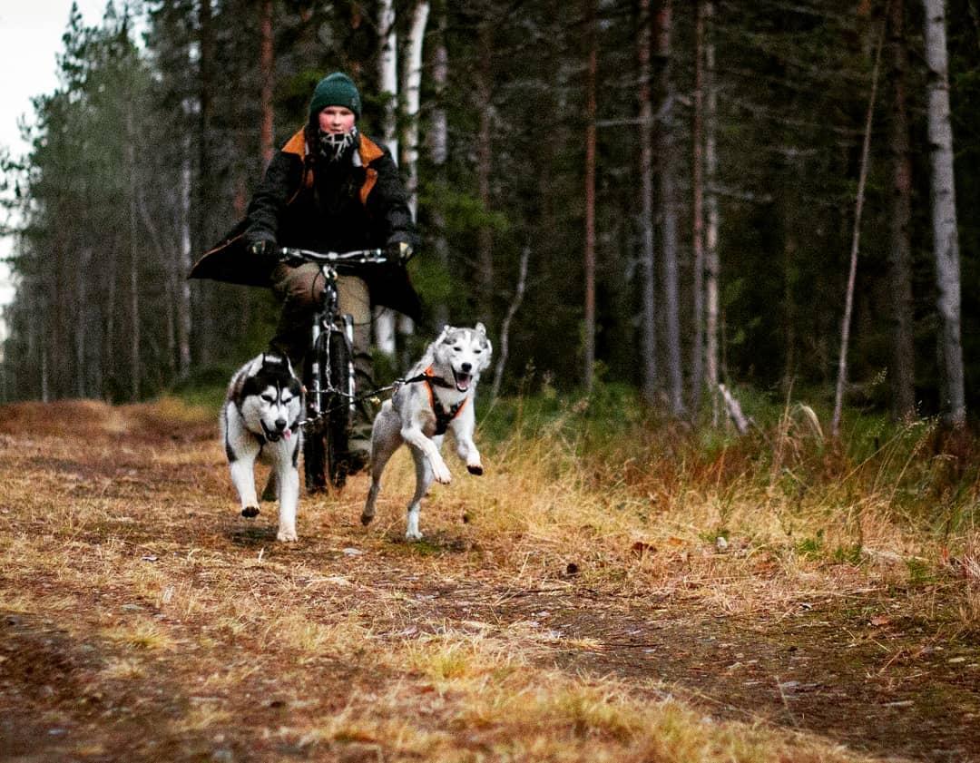 Arctic Life in Luosto, Finnish Lapland, Anouska