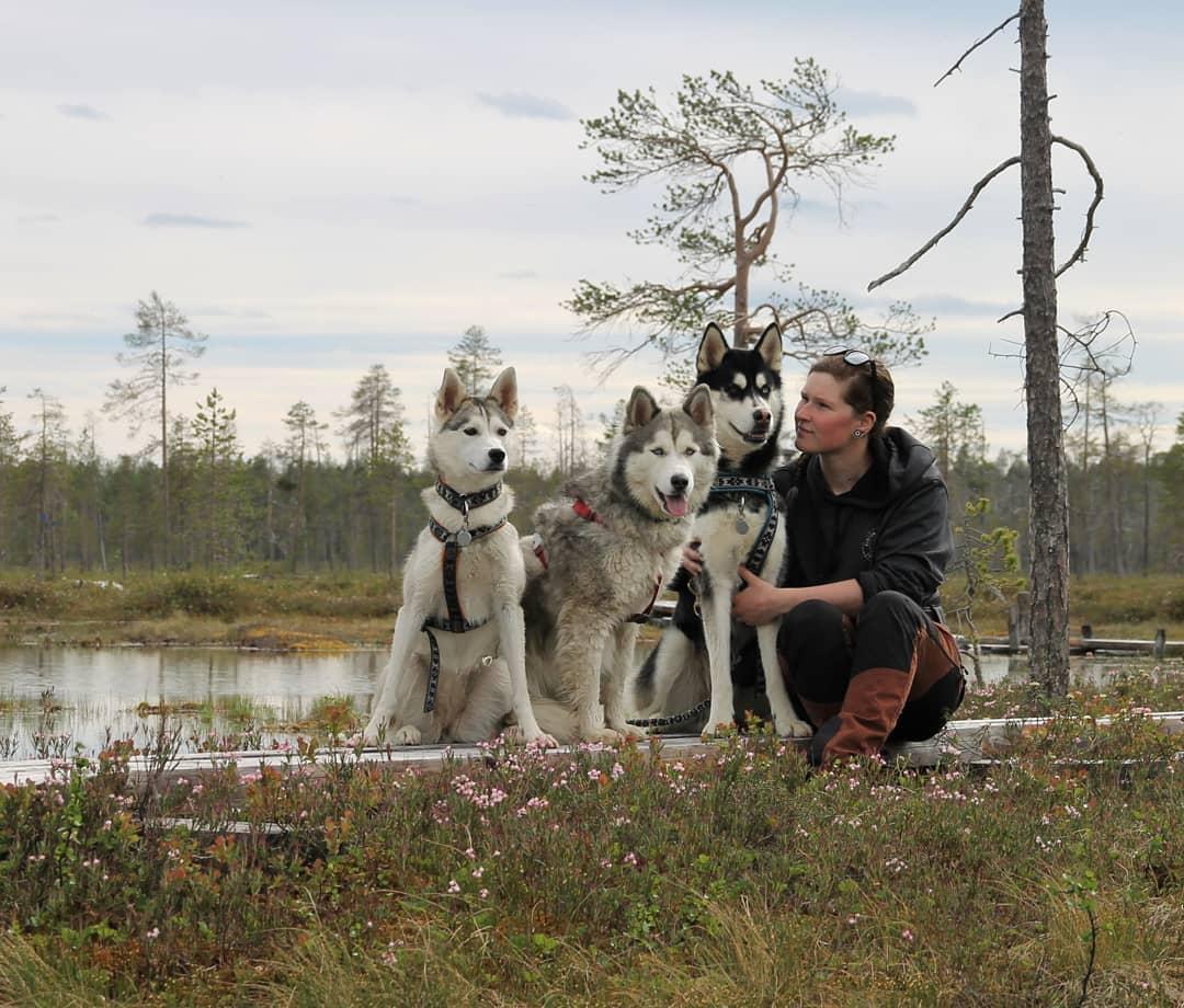 Arctic Life in Pyhä Luosto- Finnish Lapland, Visit Lapland ourlapland.fi