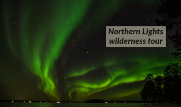 Northern Lights Wilderness Tour – Professional camera included