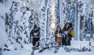 Explore the wilderness – Photography expedition- Beyond Arctic Rovaniemi Lapland