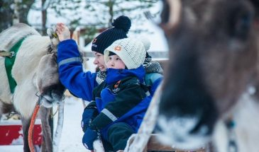 Family Day – Reindeer, huskies, snow fun and lunch- Rovaniemi- Safartica- Visit Lapland
