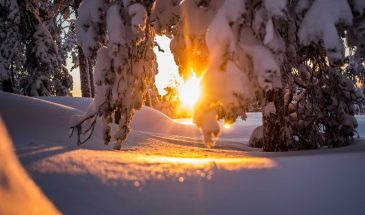 Snowshoeing in the wilderness Lapland Beyond Arctic