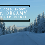 Early winter travel experience in Lapland, Finland