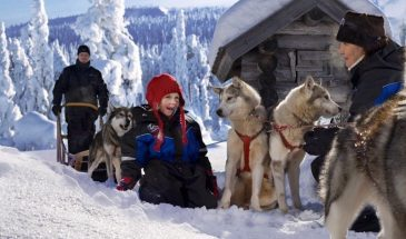 Arctic Circle Family Day: Snowmobile, Ice Fishing, Husky