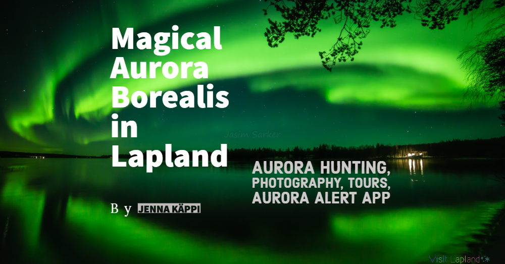 Magical Aurora Borealis in Lapland_ Everything You Need To Know about northern lights