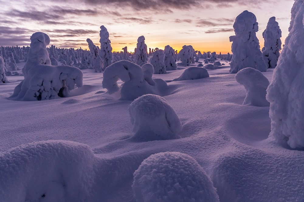 Winter wonderland Lapland - Posio Snow Finland sunset riisitunturi