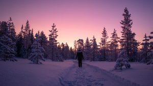 Anniina Olkkonen - Dream pink and purple moments in Salla Finnish Lapland winter