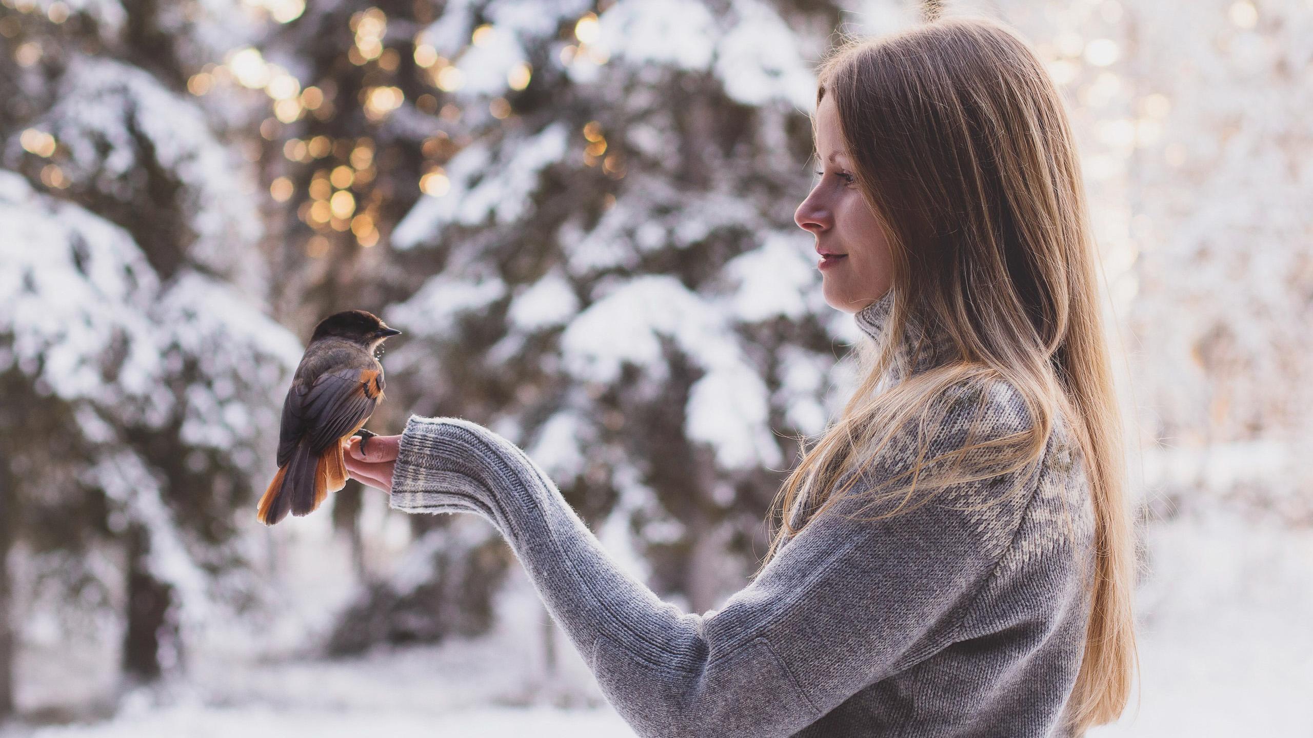 Anniina Olkkonen with Siberian Jay- everyday life in Salla Lapland- WInter in Finland