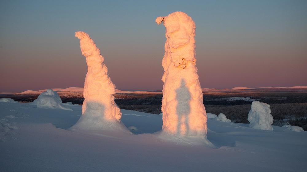 Arctic dream in Lapland Salla- Anniina Olkkonen Winter nature in the arctic