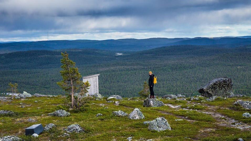 Summer hiking in Inari Otsamo Fell- teh nightless nights Lapland By Jasim Sarker