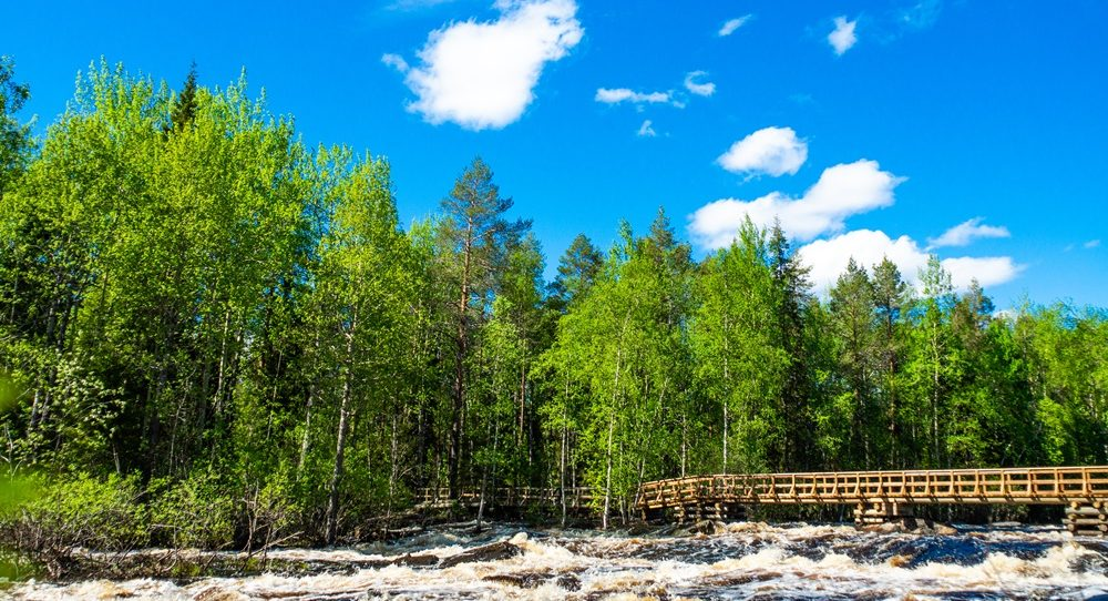 River view in the summertime in Lapland