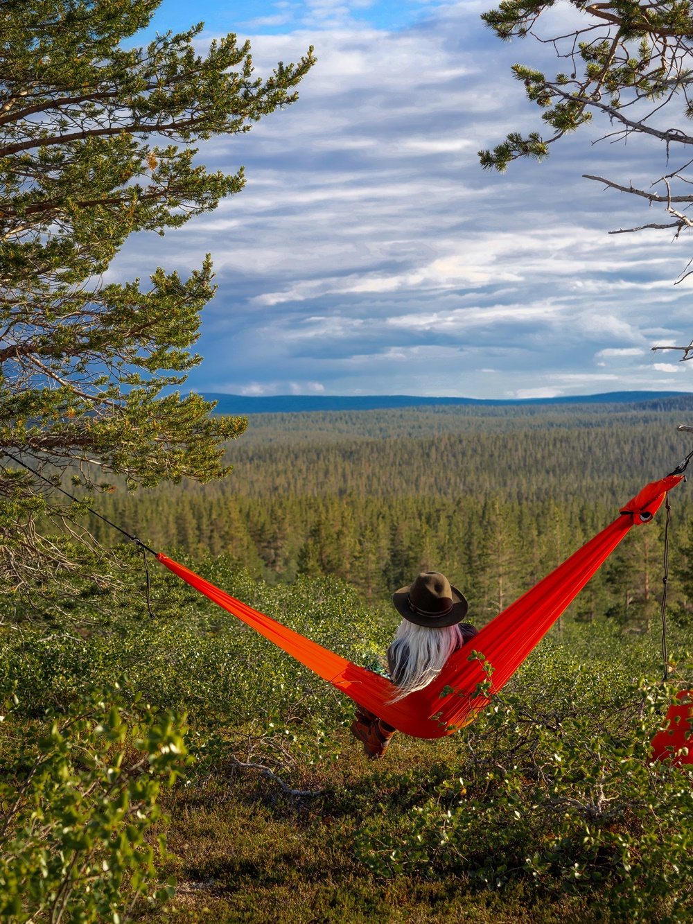 Hammock in the nature in Lapland