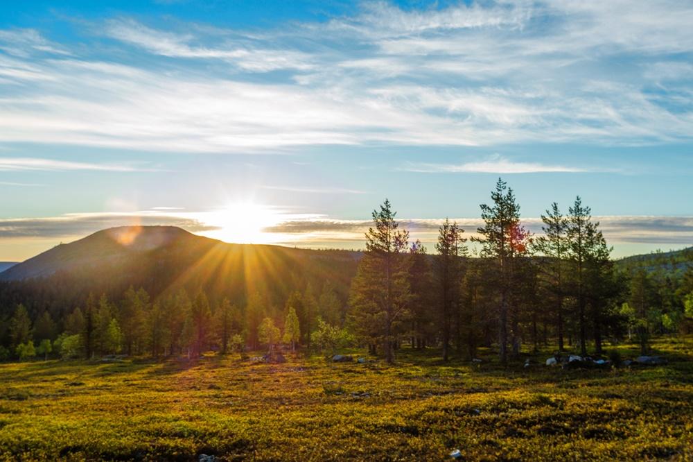 Midnight sun in Ylläs