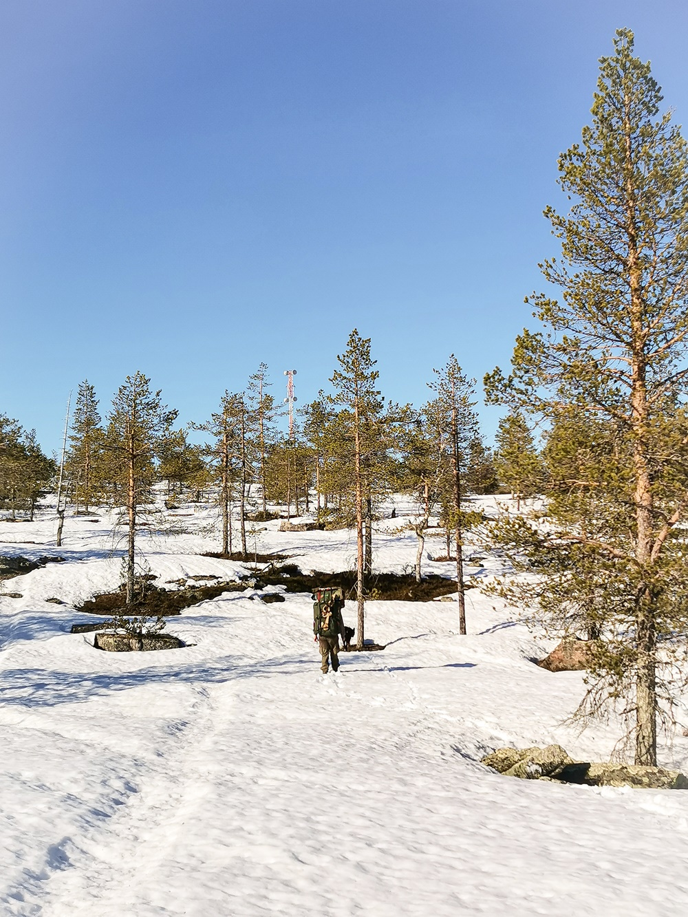 Hiking in snow in the middle of the summer in Lapland
