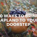 Lapland-Kuksa-Blueberries-Home-Tips