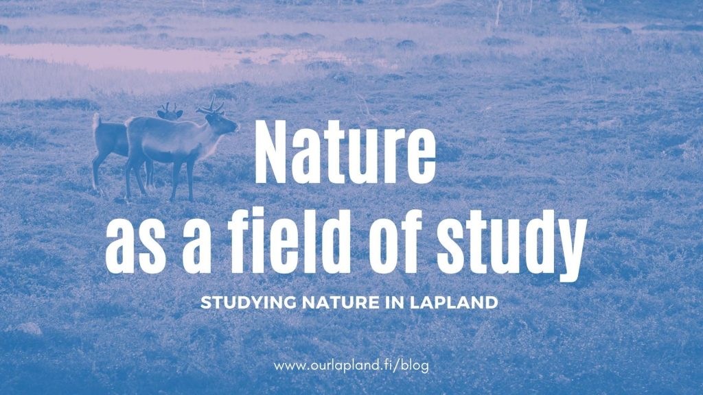 Lapland-Education-Nature-Studying-Wilderness