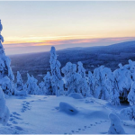 Lapland Gets A New National Park In Sallatunturi- picture Iida-Aletta Pirttilä