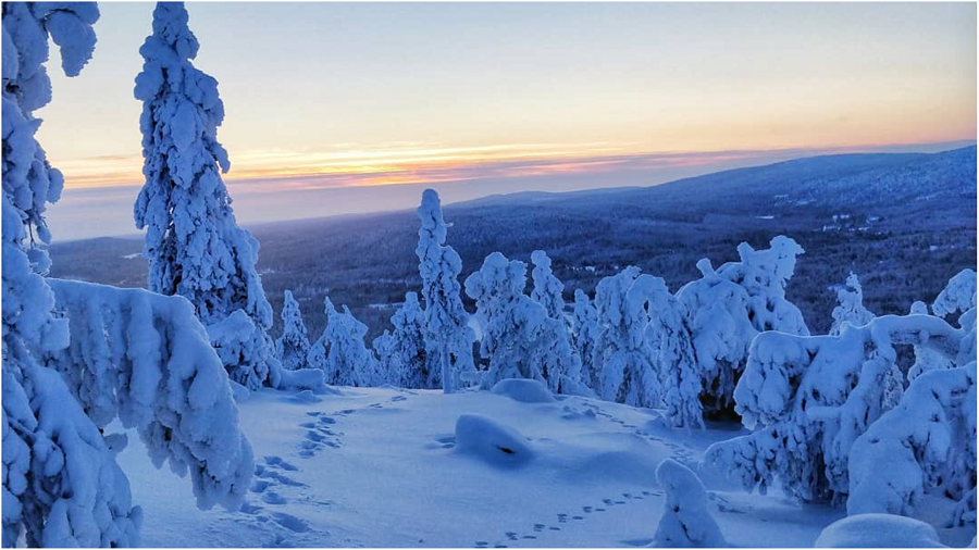 Lapland Gets A New National Park In Sallatunturi- picture Iida-Aletta Pirttilä