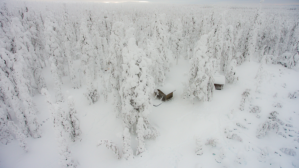 Winter wilderness Posio Lapland Finland