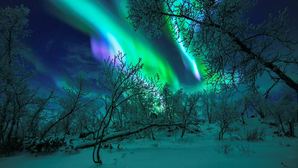 Kilpisjärvi local tips 3- brightest colours come with polar night- the aurora borealis in Lapland