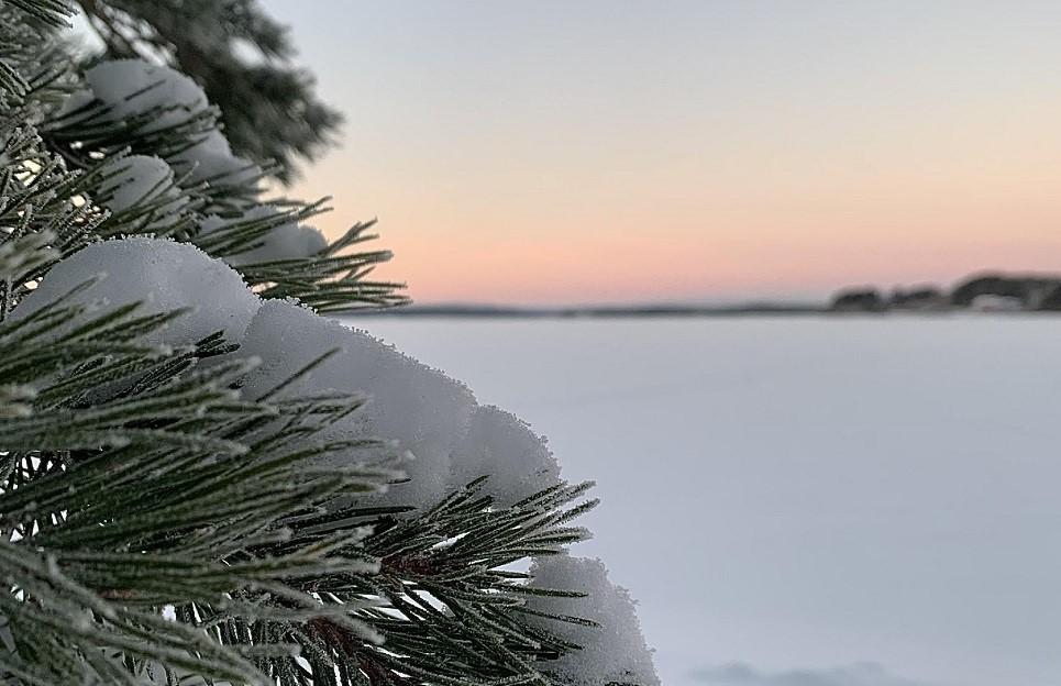 Winter in Kemijärvi Lapland By Jenna Heikkilä