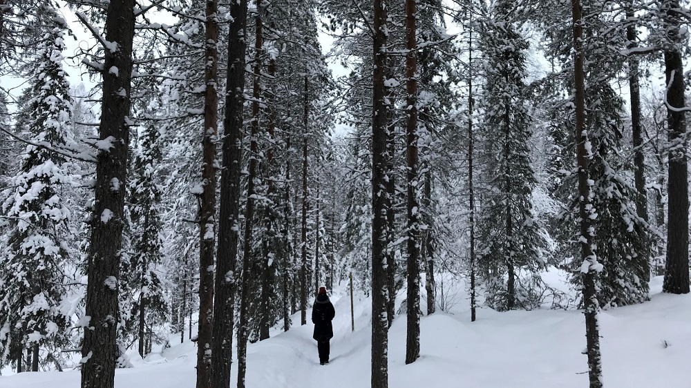 Hiking in Korouoma during winter Posio Lapland By Claudia Martens