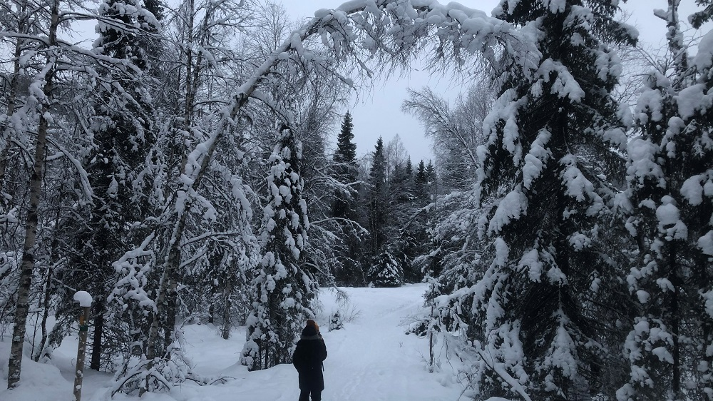 Posio Korouoma winter hiking trip By Claudia Martens- Visit Lapland