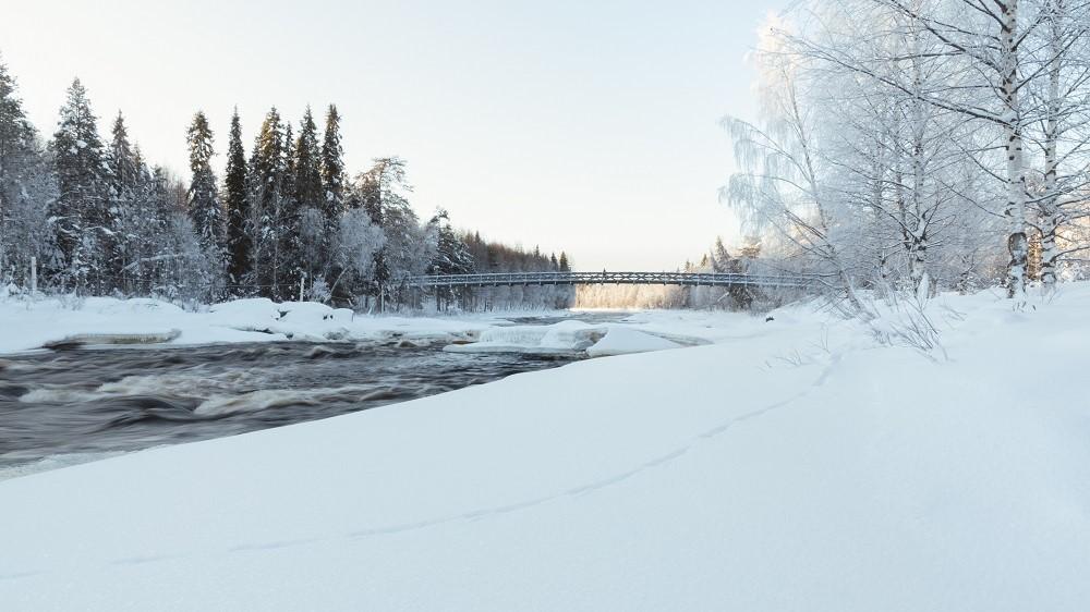 Vikaköngäs bridge - Arctic circle hiking area Rovaniemi Lapland