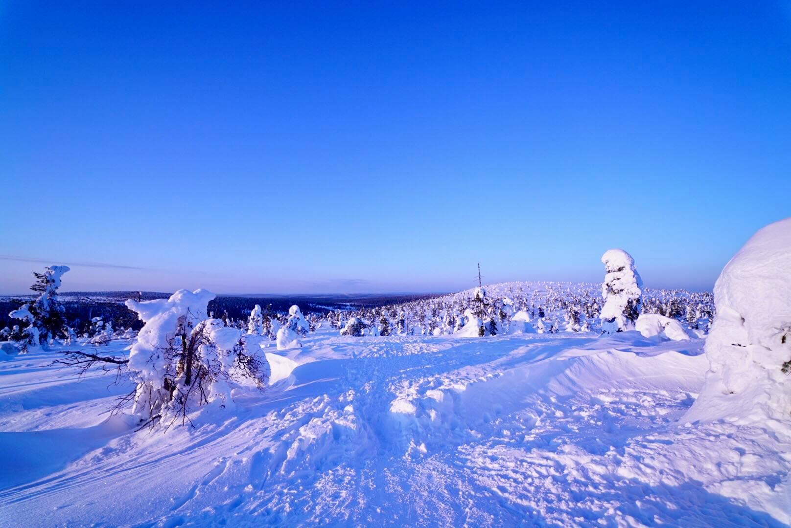 Riisitunturi fell in winter